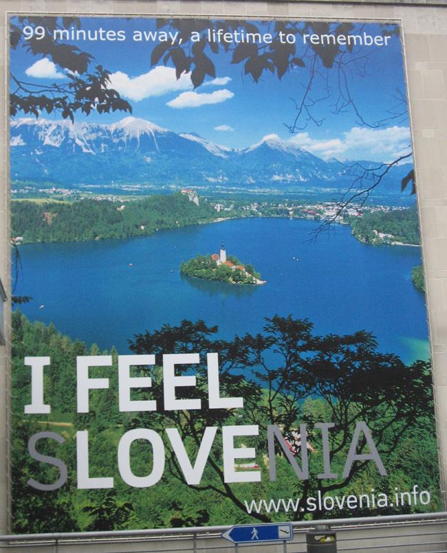 I Feel s-LOVE-nia